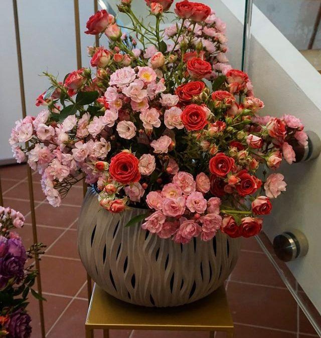 XXIII Święto Róż