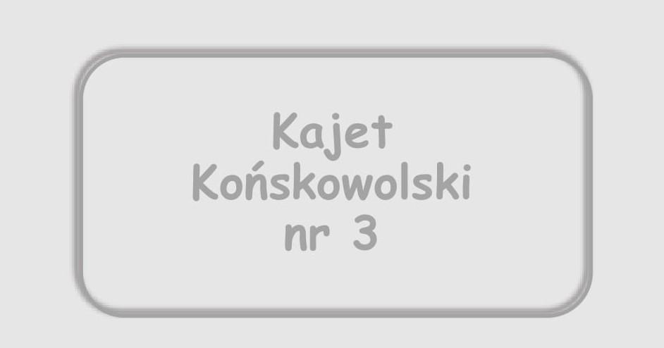Kajet Końskowolski nr 3 w sprzedaży!